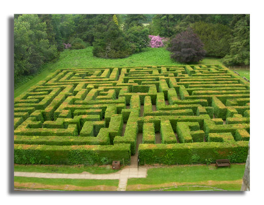 The Maze in Traquair House Park - 2006