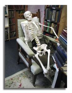 The Book Shop - Squeleton - Wigtownm