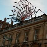 Peacock Princes Square Glasgow Scotland
