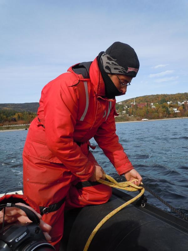 Tadoussac whales watching cruise Otis zodiac Pilote Quebec QC