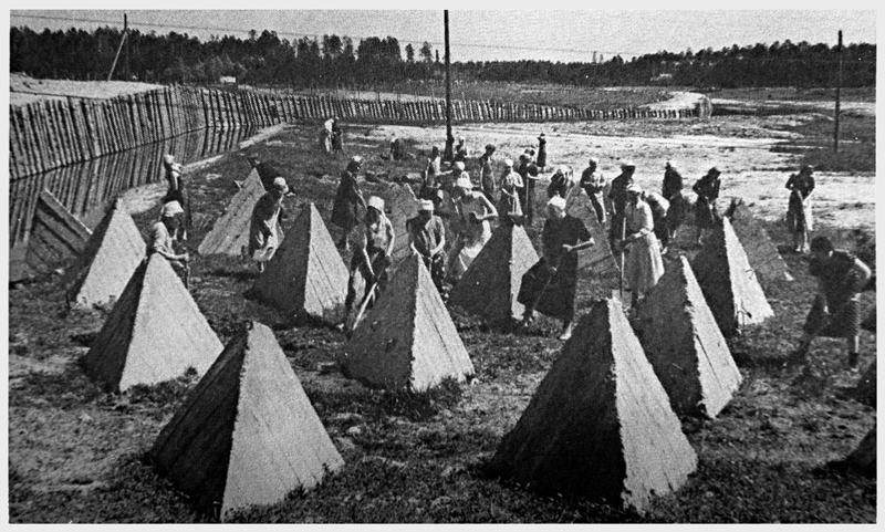 Anti-tank barriers on the outskirts of Leningrad - Dear Allies Margaret Henderson - Monklands District Libraries 1988
