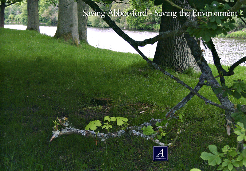 Saving Abbotsford Saving the Environment Abbotsford Trust brochure