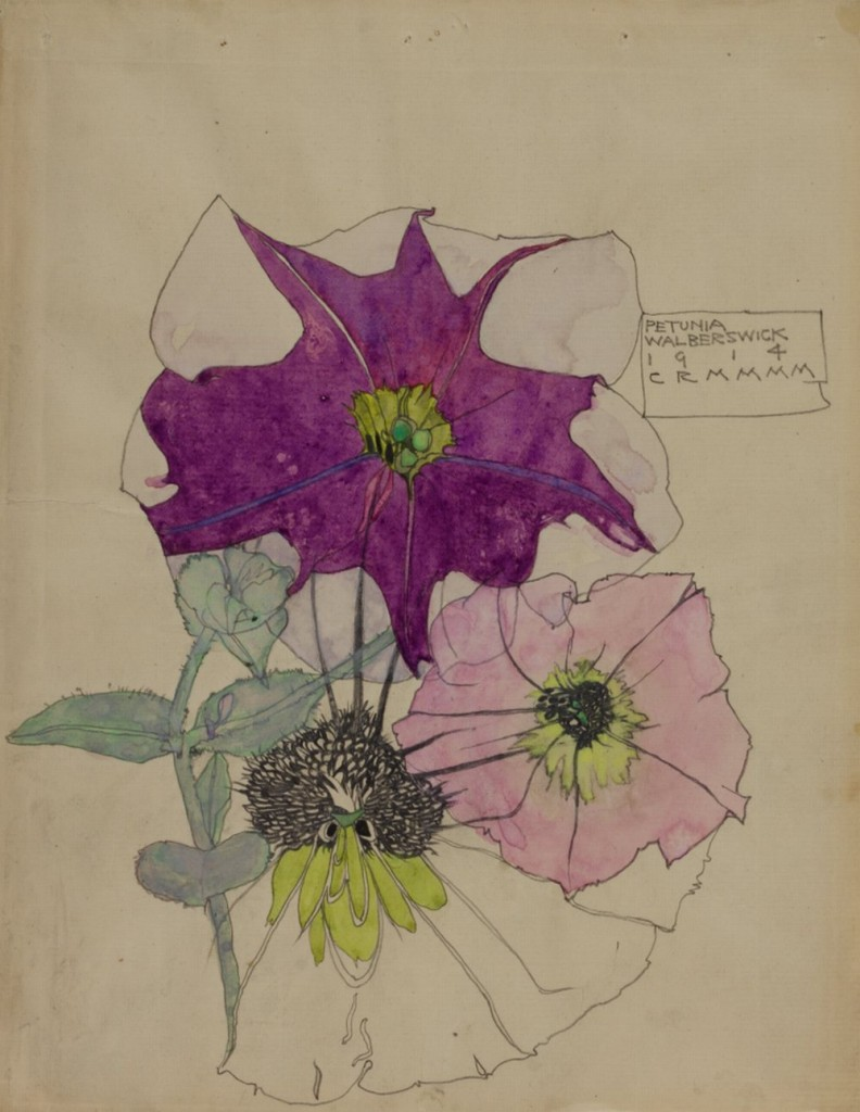 Petunia, Walberswick1914 Source The Hunterian Museum & Art Gallery University of Glasgow