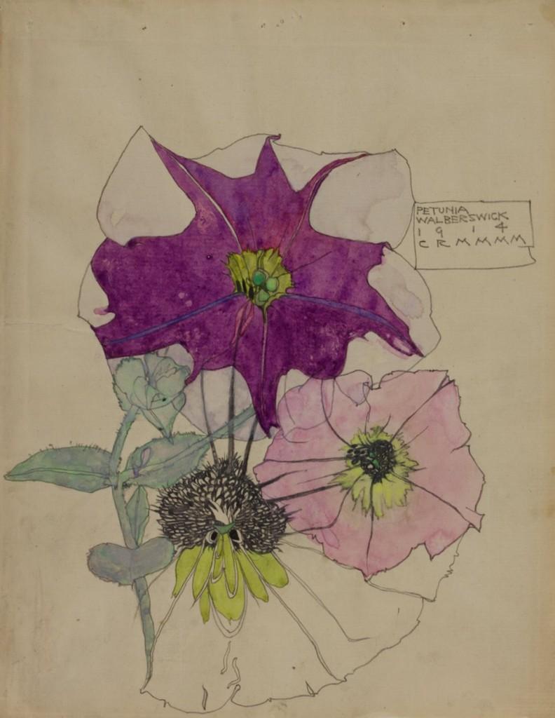Petunia, Walberswick1914 Source The Hunterian Museum & Art Gallery University of Glasgow