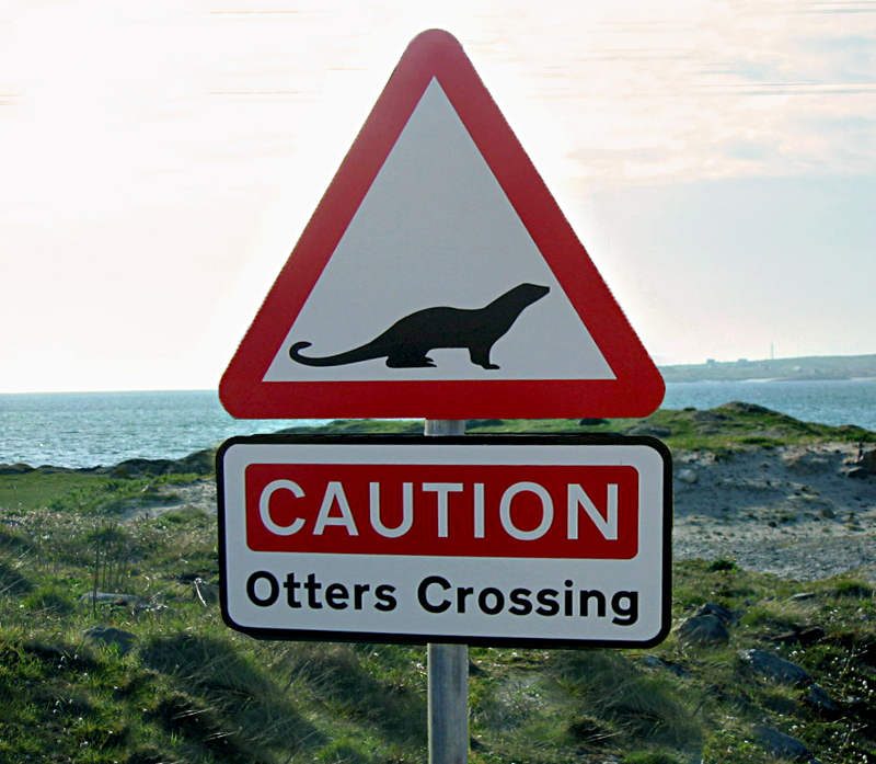 Eriskay Caution otters crossing road sign © 2004 Scotiana