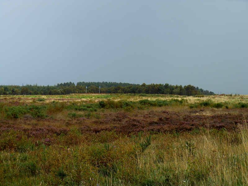 Battle of Culloden moor Scotland © 2012 Scotiana