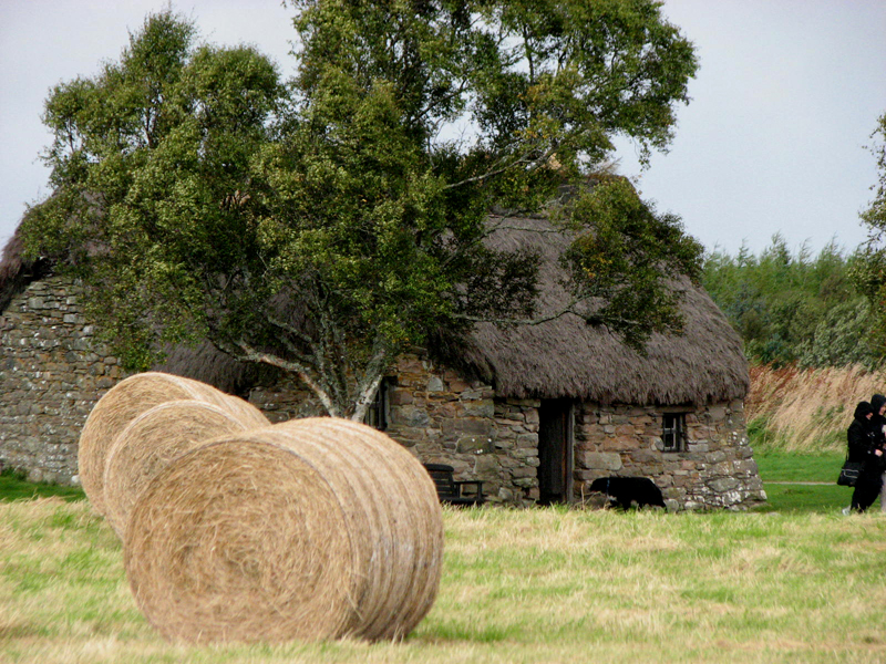 Culloden haystacks in front of old Leanach cottage © 2012 Scotiana