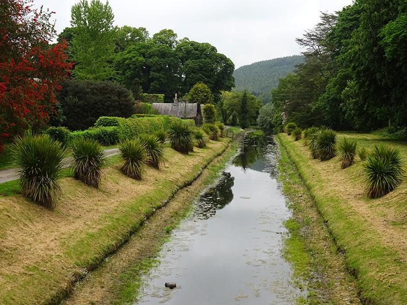 Castle Kennedy Gardens  Cordyline Avenue Dumfries & Galloway near Stranraer © 2015 Scotiana
