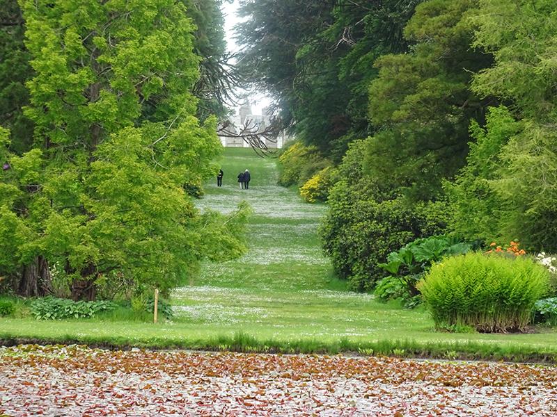 Castle Kennedy green avenue © 2015 Scotiana