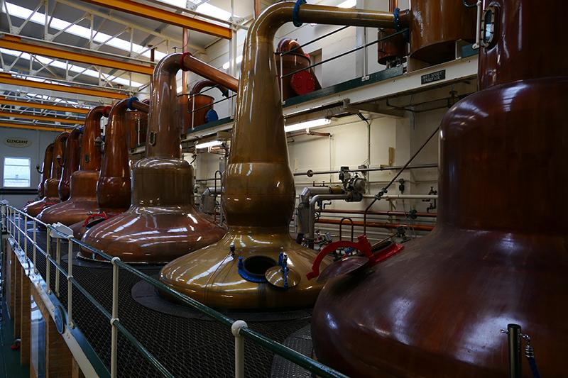 GlenGrant Distillery  copper stills © 2015 Scotiana