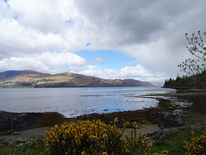 Loch Linnhe © 2015 Scotiana