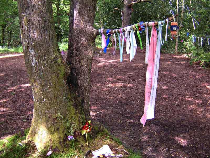 Doon Hill fairy tree Aberfoyle © 2004 Scotiana