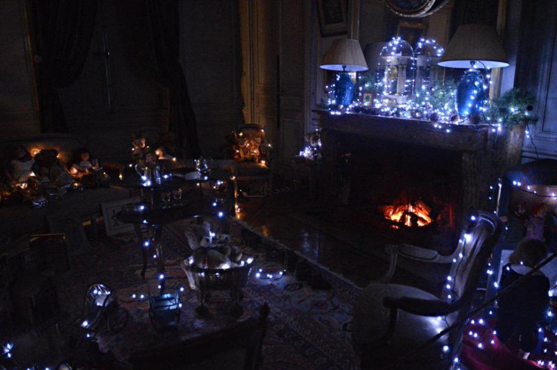 Noël au château de La Ferté Saint Aubin © 2014 Scotiana