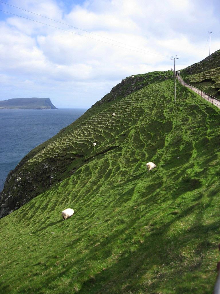 Neist Point Lighthouse sheep grazing Isle of Skye Scotland