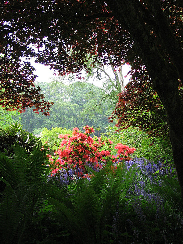 Fyvie Castle gardens © 2006