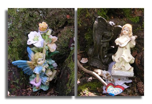 Doon Hill Fairies