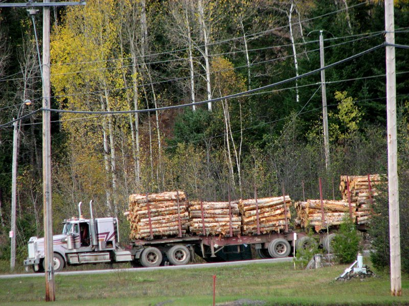 Canadian truck wood logs Quebec QC