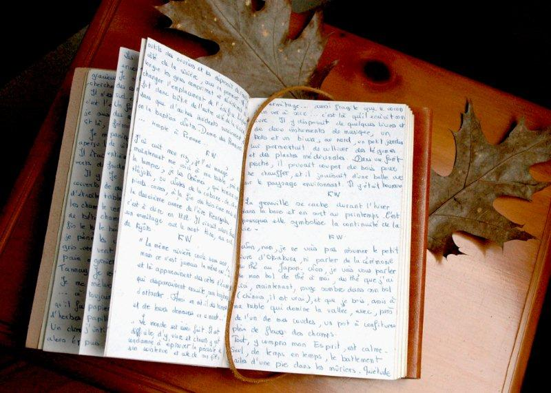 Kenneth White Lettres de Gourgounel notebook Scotiana 2011
