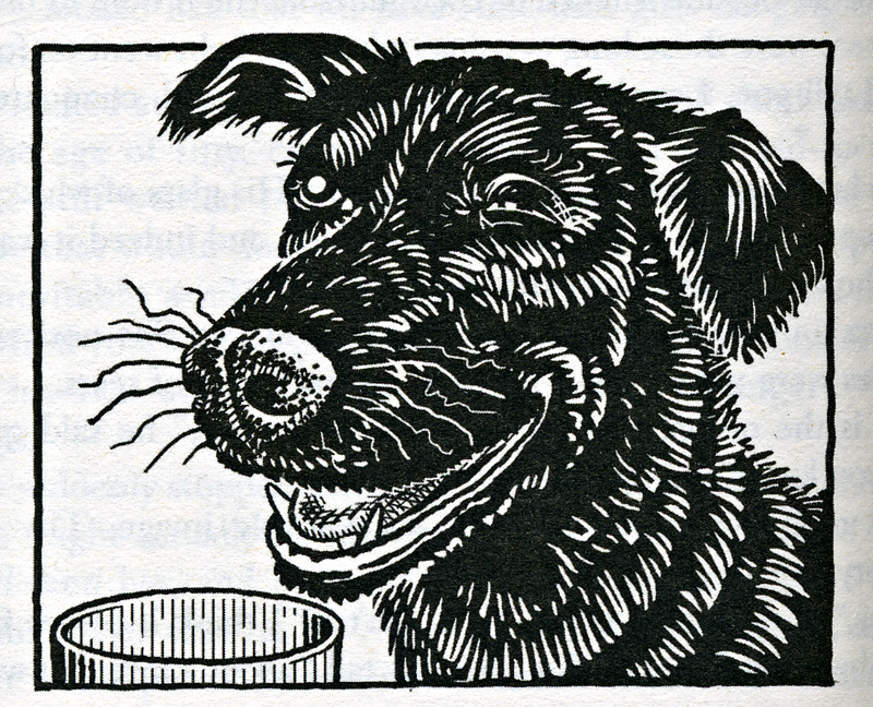 Alexander McCall Smith 44 Scotland Street Cyril the dog Polygon and Abacus editions 2005