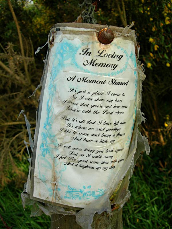 Scottish Borders Scott's View In Memoriam poem  © 2006 Scotiana