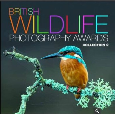 Brisitsh Wildlife Photography Awards