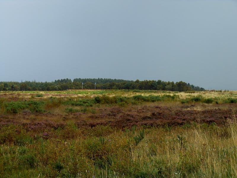 Battle of Culloden moor Scotland © 2012 Scotiana