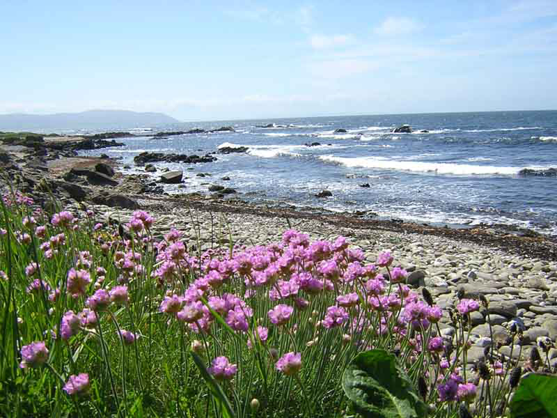 Kintyre peninsula western coast © 2004 Scotiana