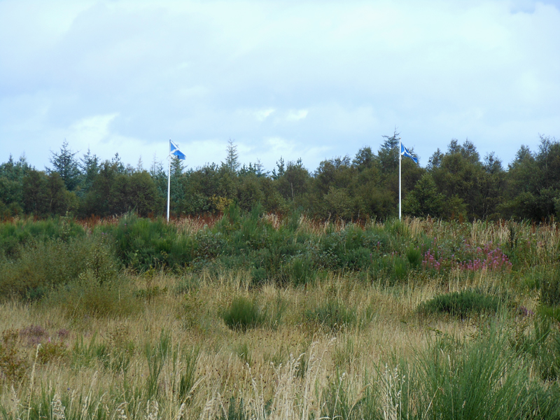 Culloden battlefield Scottish flags © 2012 Scotiana