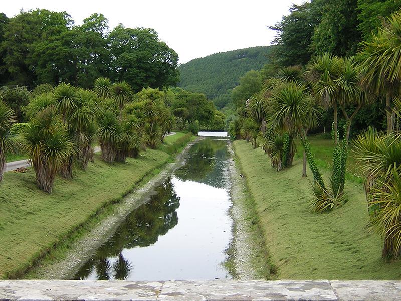 Castle Kennedy Gardens Cordyline Avenue © 2004 Scotiana