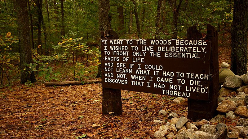 Thoreau quote near his cabin Walden pond site
