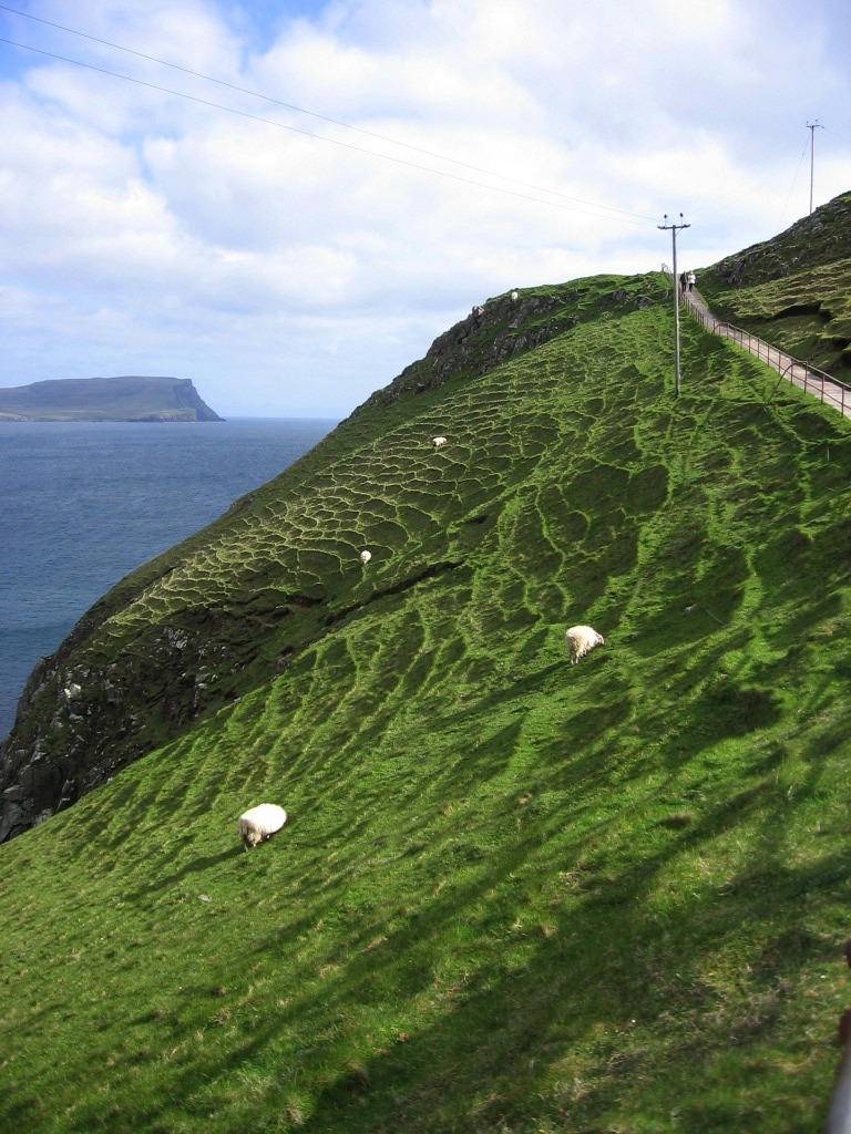 Neist Point Lighthouse sheep grazing Isle of Skye Scotland
