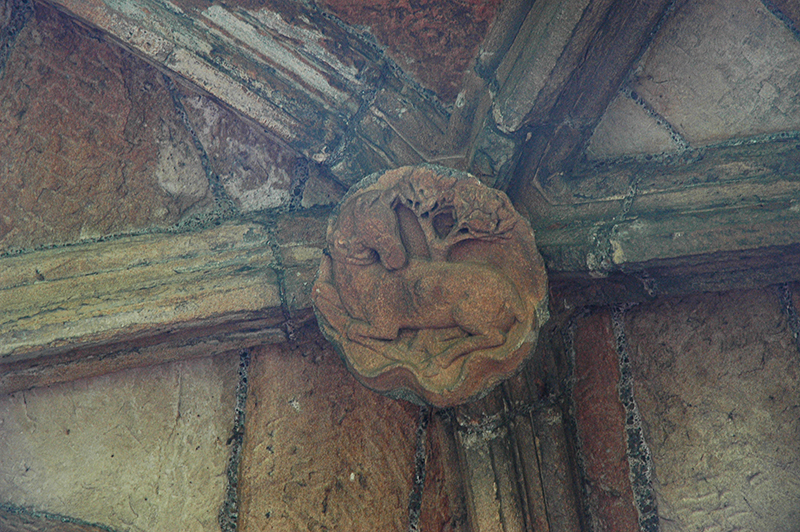 Linlithgow Palace ceiling dog tree emblem © 2007 Scotiana