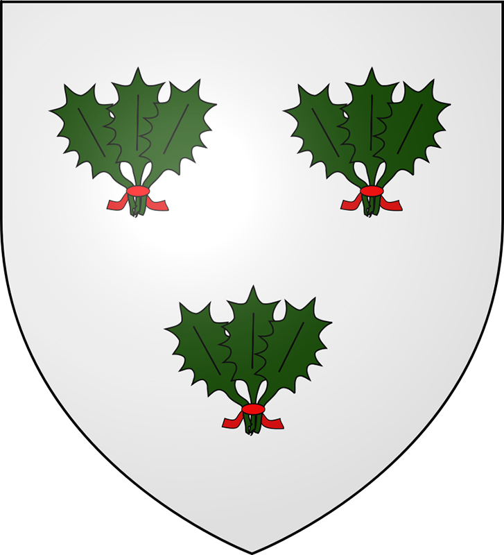 Coat of arms of clan Irvine of Drum