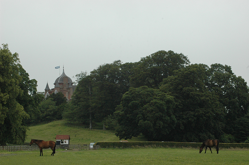 Horses in Thirlestane Castle park © 2007 Scotiana