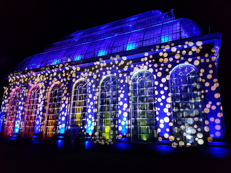 Edinburgh Christmas at the Botanics - Palm House 1© 2019 Scotiana